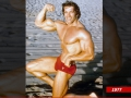 Arnold-Schwarzenegger3